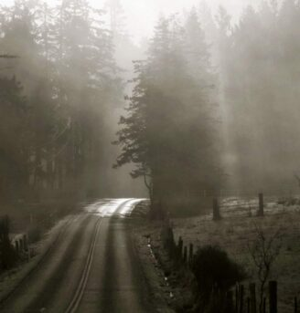 Misty view of Crow Valley Road