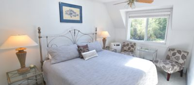 Blue Bird Room with skylight, ceiling fan, chairs for relaxing